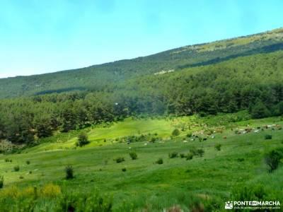 Chorro,Chorrera San Mamés_Valle del Lozoya;parque natural pagoeta nacimiento del rio pisuerga march